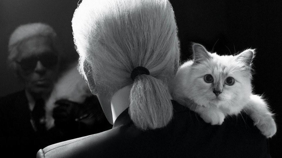 t-Karl-Lagerfeld-Choupette